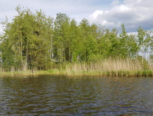 Finské jezero, ostrov