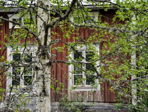 Finsko, dřevostavba