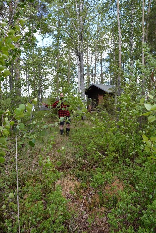 Chata na ostrově, Finsko, finská příroda