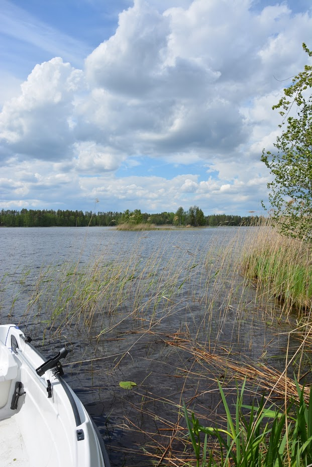 Finsko, jezero, ostrov, léto