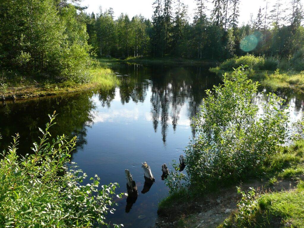 Příroda, Finsko