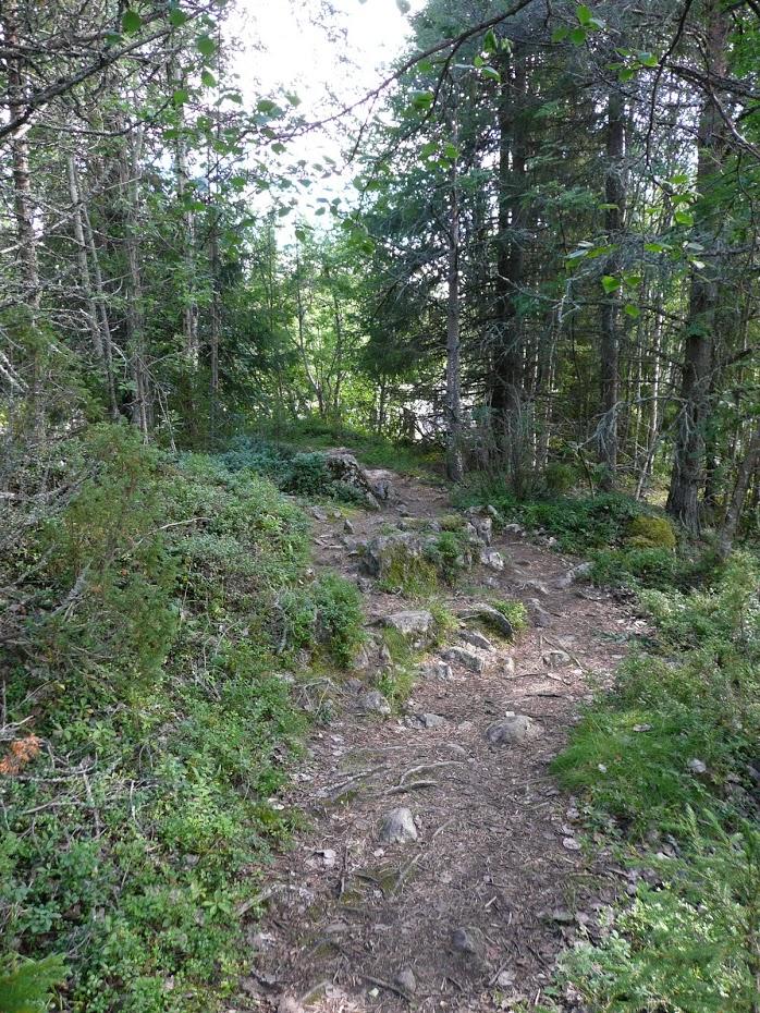 Finsko, příroda
