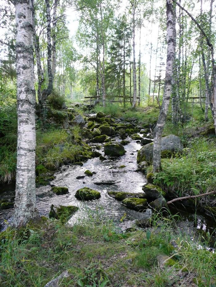 Finsko, Kitkajoki, řeka