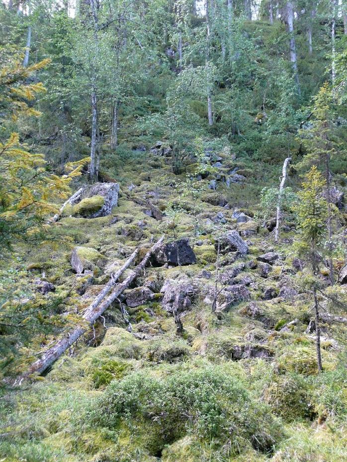 Oulanka, příroda, Finsko