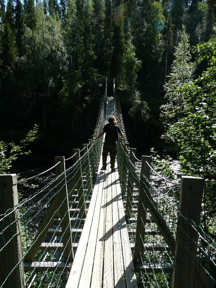 Oulanka, národní park, visutý most