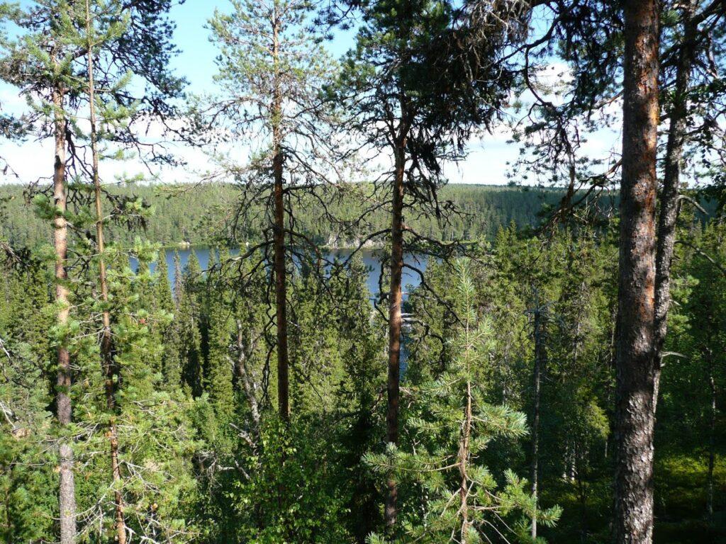Národní park, Finsko, Oulanka