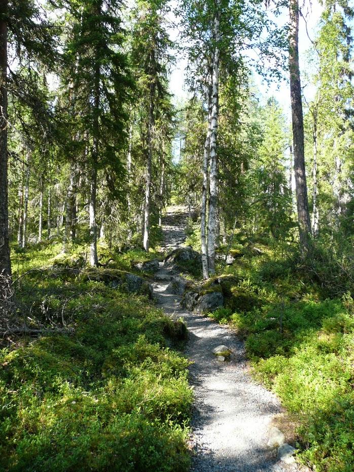 Oulanka, národní park, Finsko