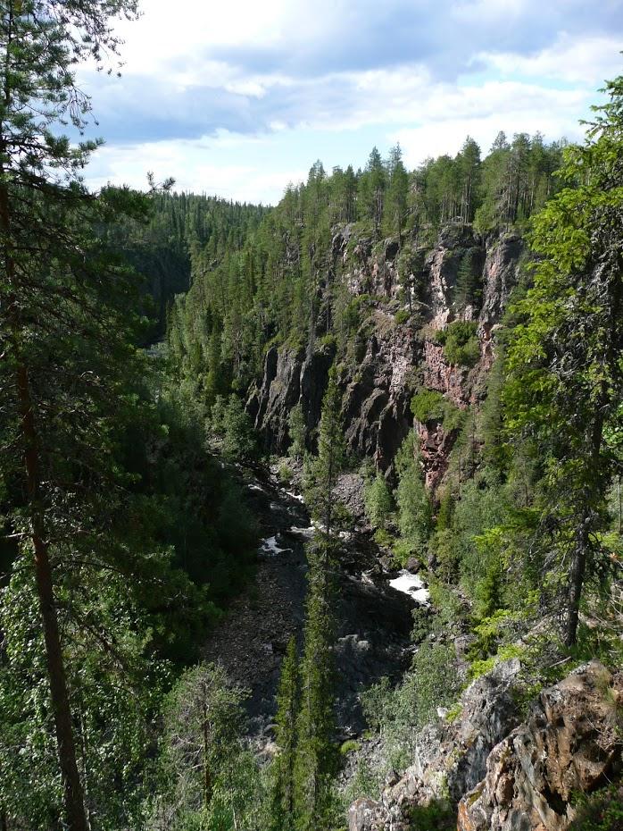 Národní park, rokle, les, řeka