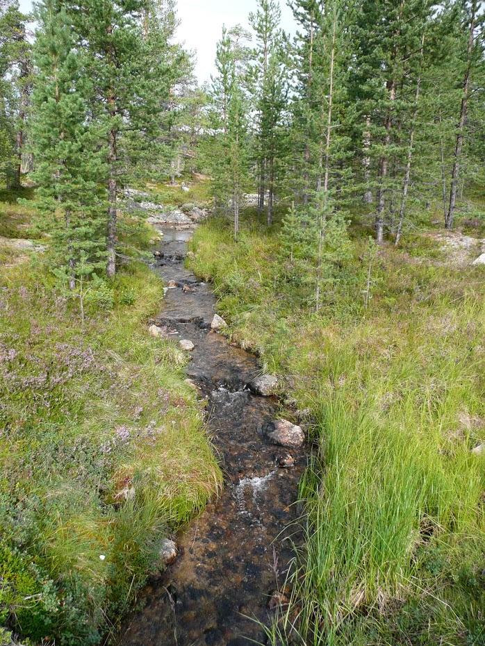 Příroda, Finsko, říčka