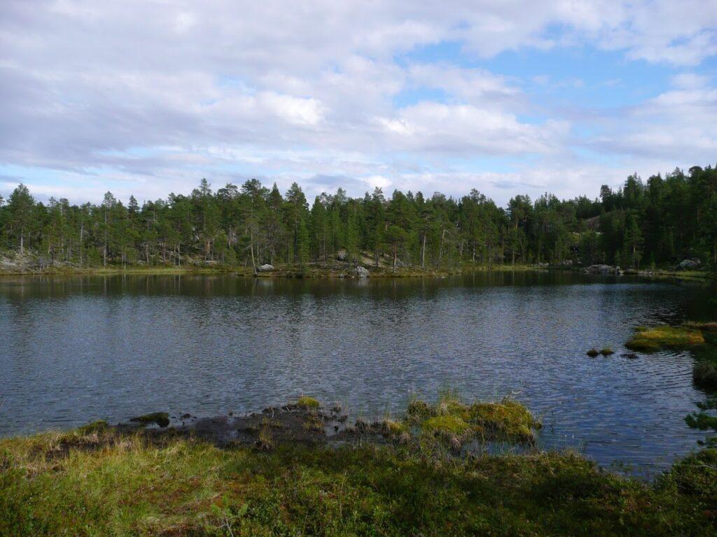 Jezero, Finsko, příroda