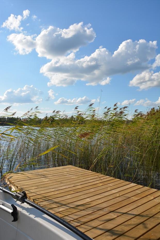 vodní traviny, jezero