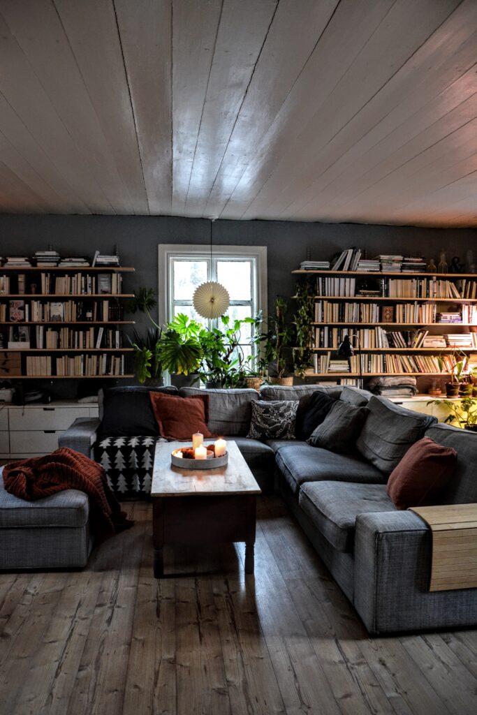 knihovna, police na knihy