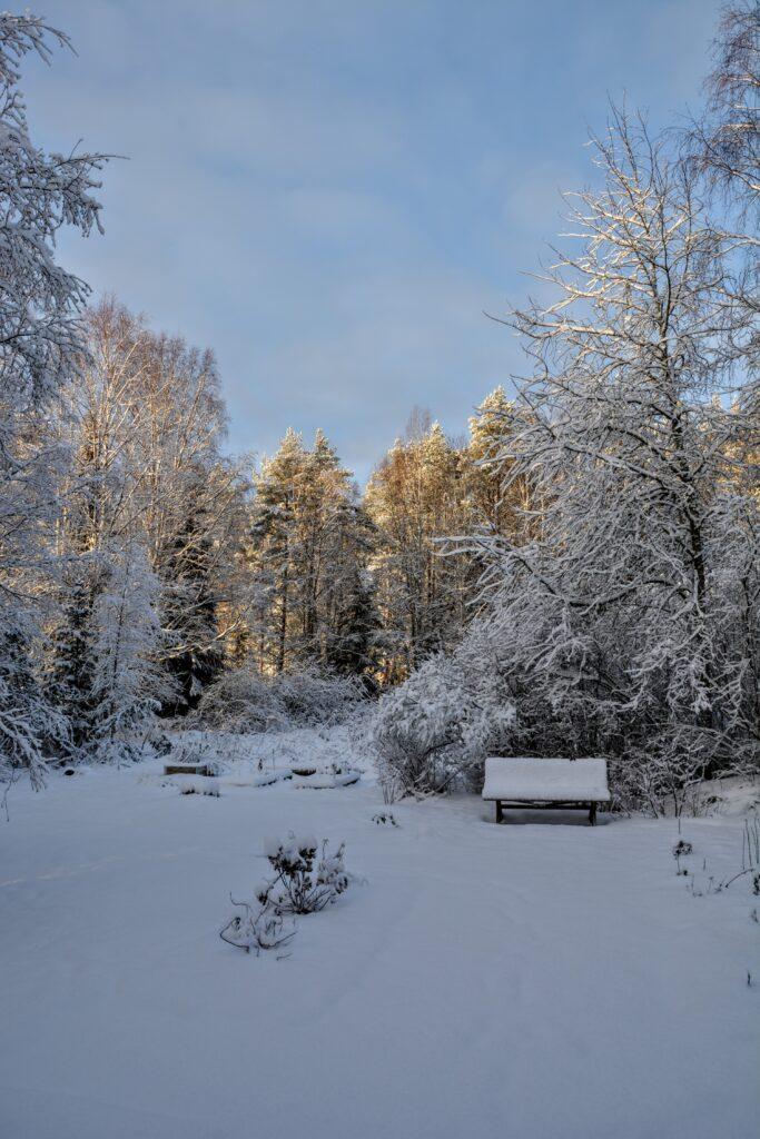 finská zima