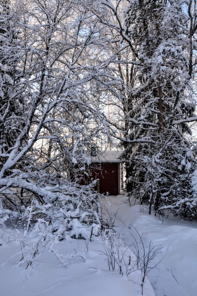 sauna na dvoře
