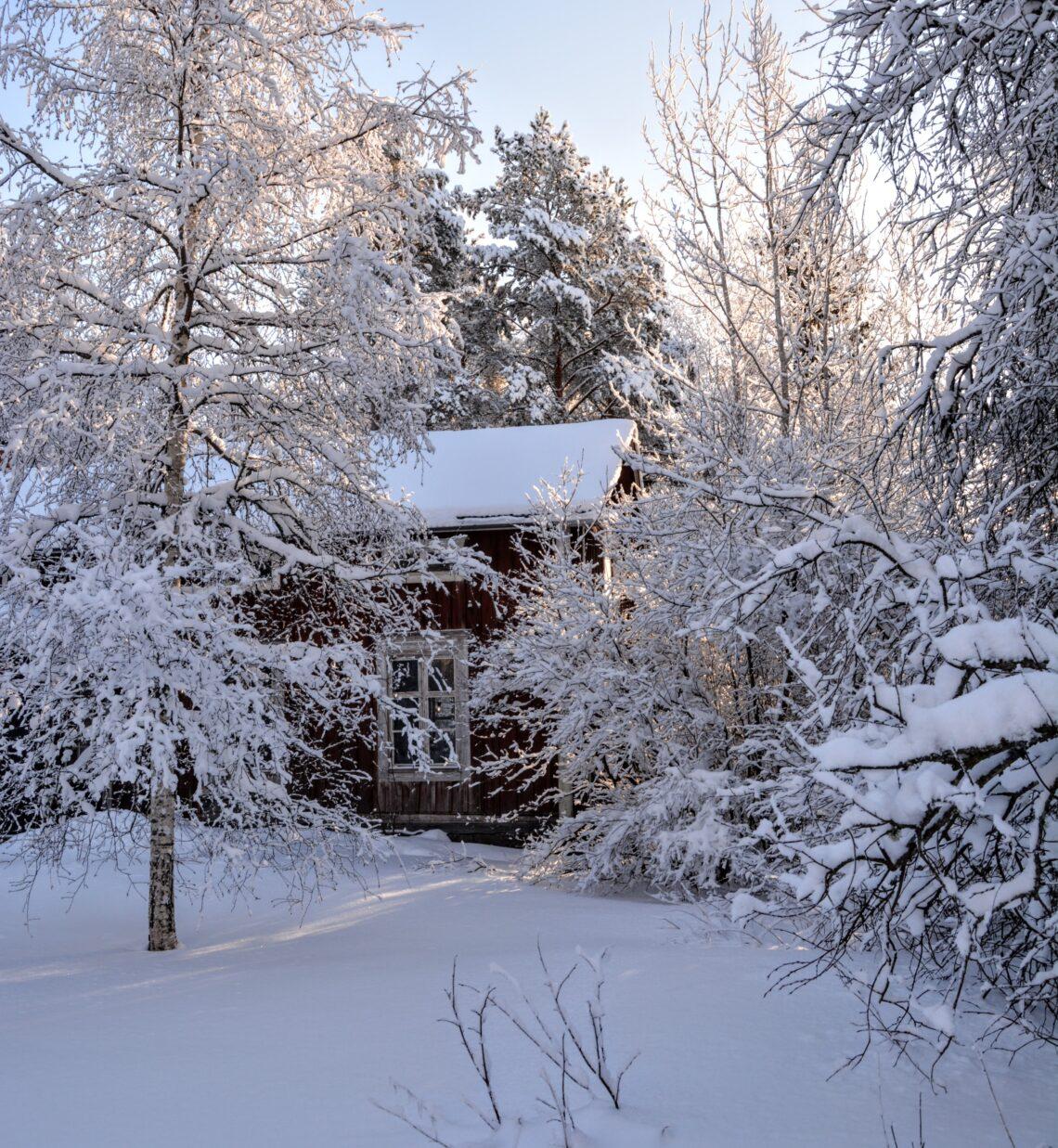 severská zima