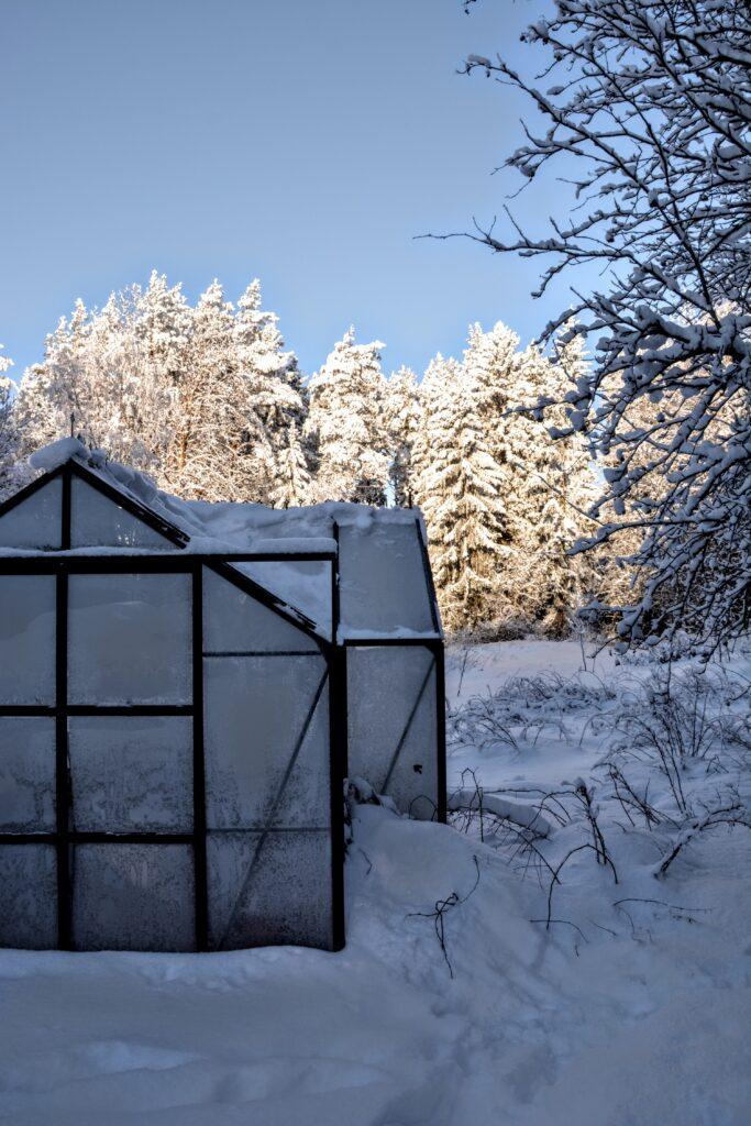 skleník Vitavia