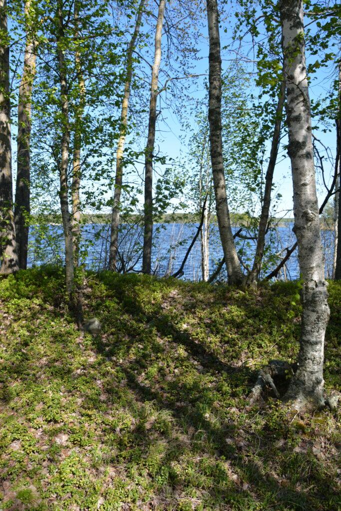 ostrov na jezeře